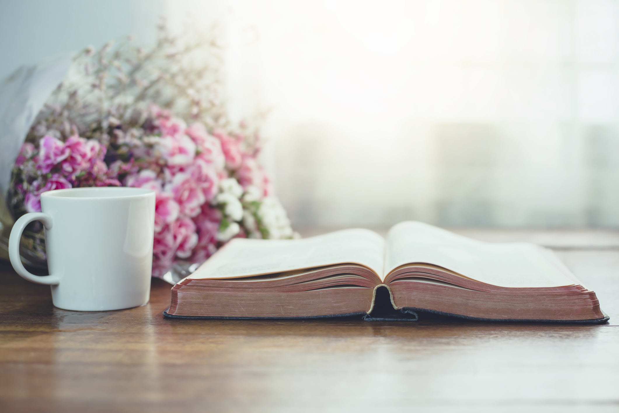 Women's Ministry Summer 2021 Bible Studies